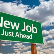 Employment opportunities through new website businesses.